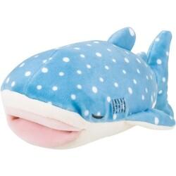 Jinbe, el tiburón ballena de 17 cm
